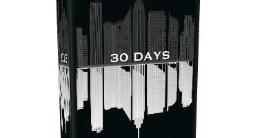30 DAYS /  FREE EXCERPT